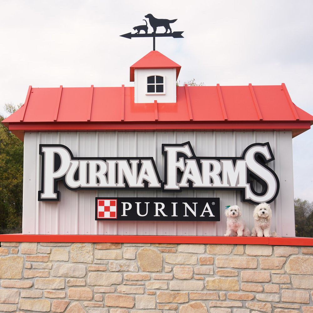 Goodbye Purina Farms and Ultimate Air Games!! It was a blast…maybe we'll see you next year! (It may take us that long to recover!)