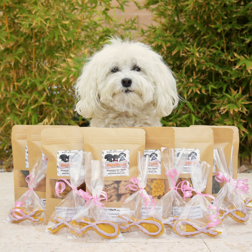 Today's the big day! Jump for a Cure. Where Bruiser, and all of his dock diving buddies, jump to raise money for some of our friends battling breast cancer. A huge thank you goes out to HavaHeart Barkery for their generosity and wonderful donation of these delicious treats and special breast cancer ribbon cookies for our raffle baskets! We can't wait to share the deliciousness with all the winners! . You are invited to come out to our favorite training facility, Hunter Canine, today! Jumping starts at 9 AM. The raffle is at 1 PM (You don't have to be present to win.) And, if you don't put your name in for a raffle basket, Bruiser just might win them all!