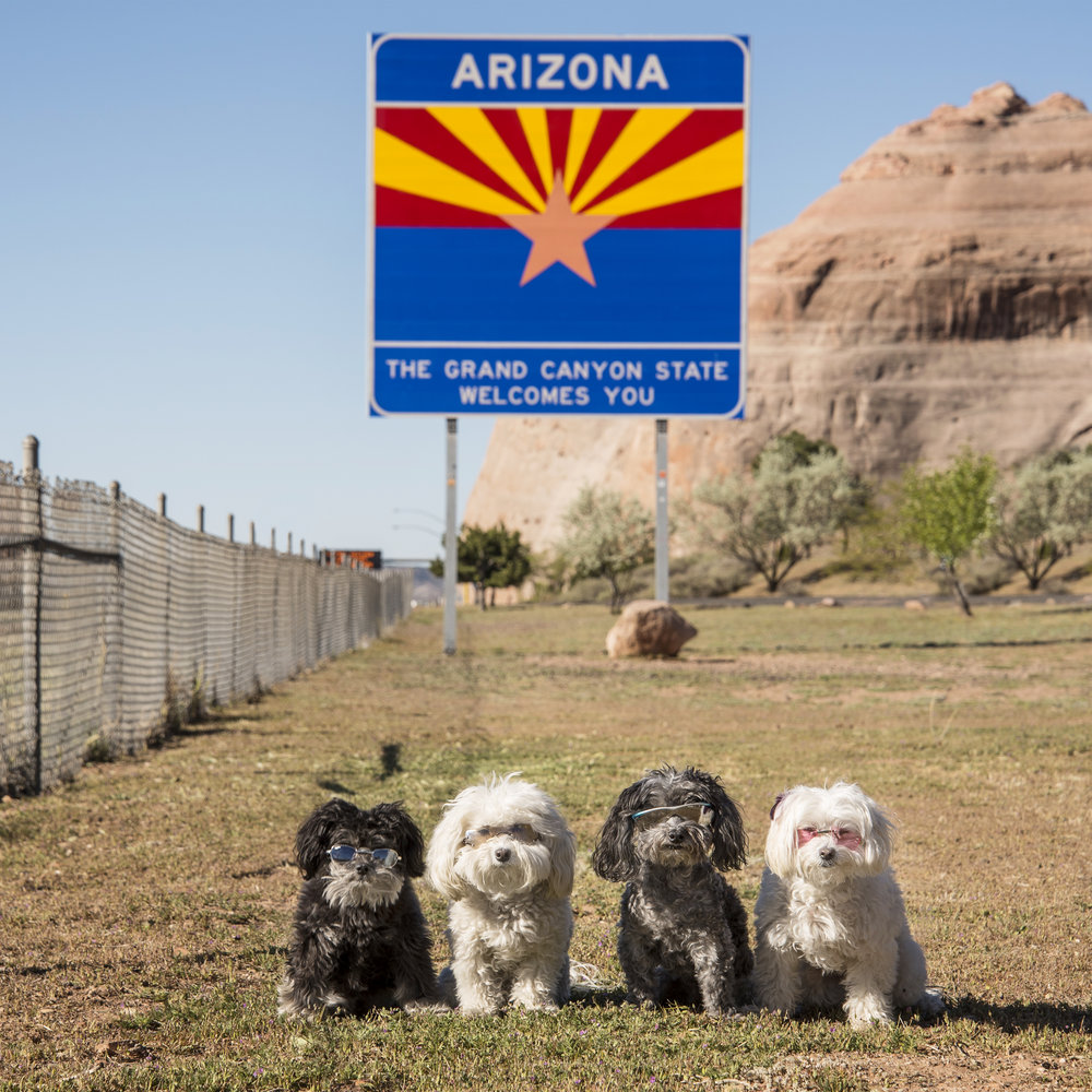 Arizona, we have missed you! It's all downhill from here!