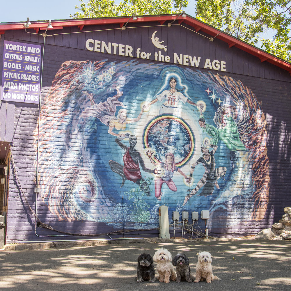 Sedona is known for its vortexes and spiritual power.Some say Sedona's vortex energy is so powerful that you can actually feel it, especially if you visit one of the four main vortex sites.