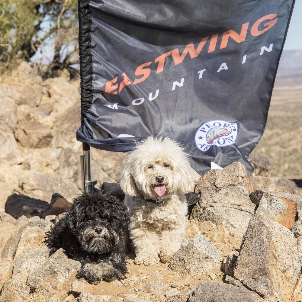 EastWing Mountain, you are our favorite, as you're our mountain, and we hike you all the time…but, we're hot and tired, so this is the best we can give you!