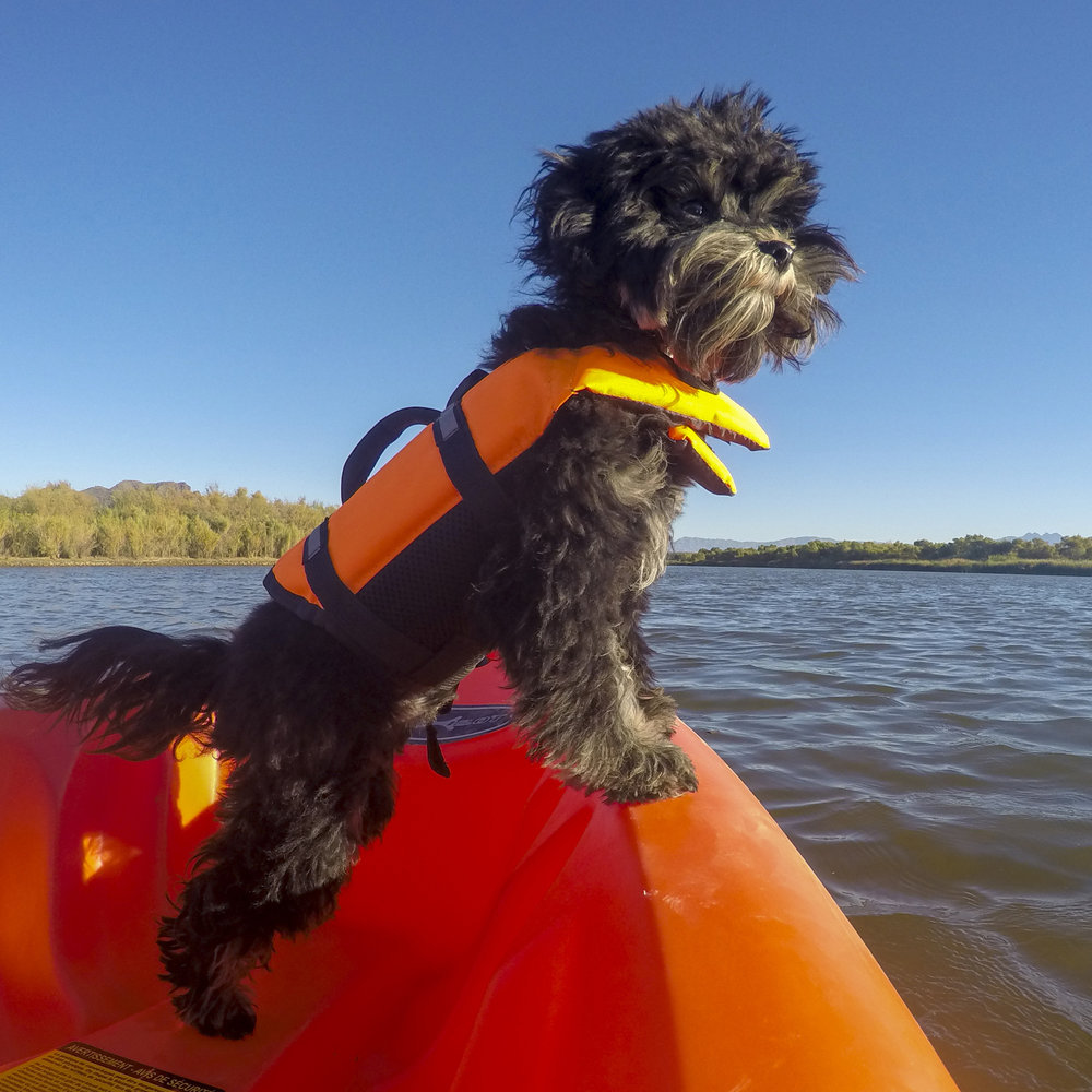Jax's first time on the water, and guess what…no big deal!