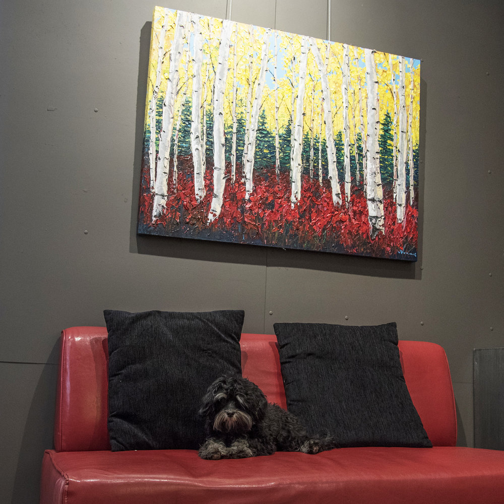 Jax is a true art connoisseur!
