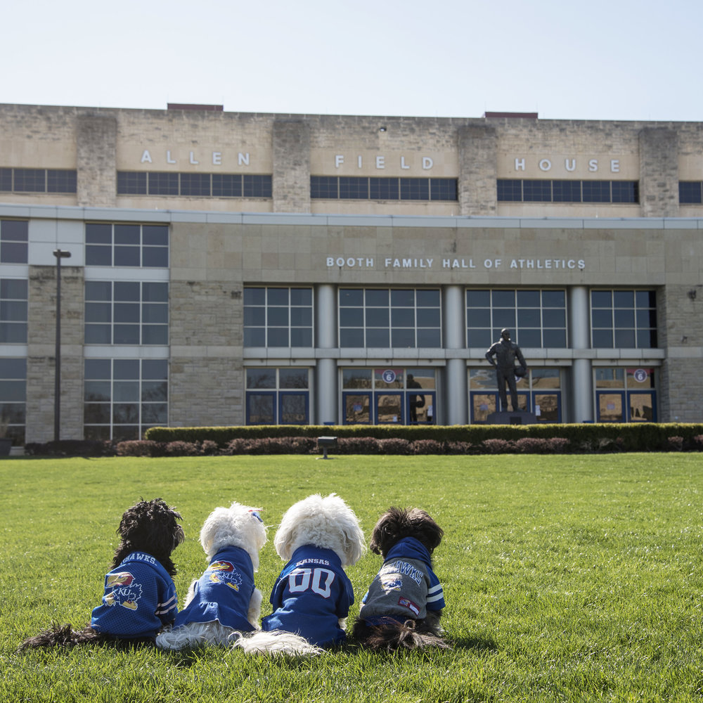 Visiting our parents alma mater, The  #UniversityofKansas , has been on our bucket list for many years. This Spring, we finally had a chance to take a tour of the campus! Of course, our tour had to start at  #AllenFieldHouse …it is the home of  #KUBBall !!