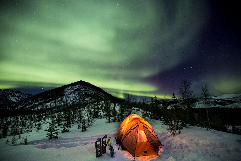 BML Alaska via Flickr