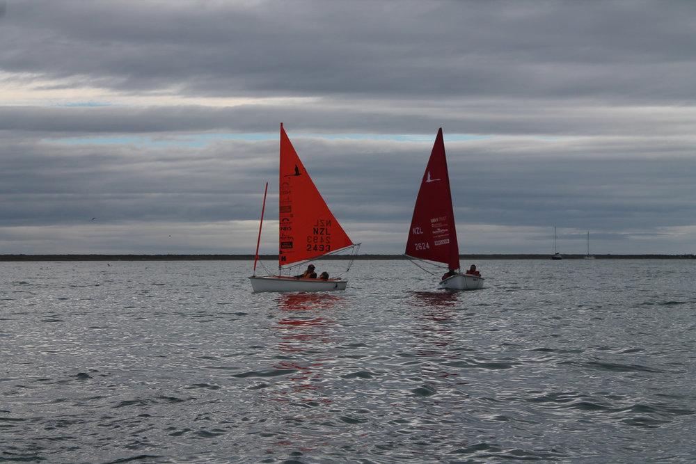 sailability-nelson (19).jpg