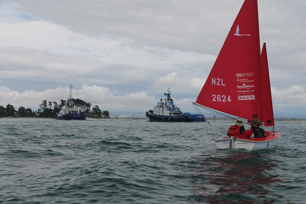 sailability-nelson (34).jpg
