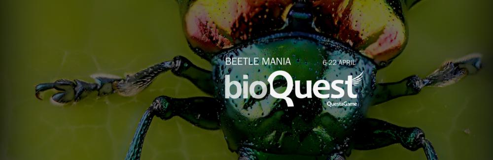 Beetle Mani main banner.png