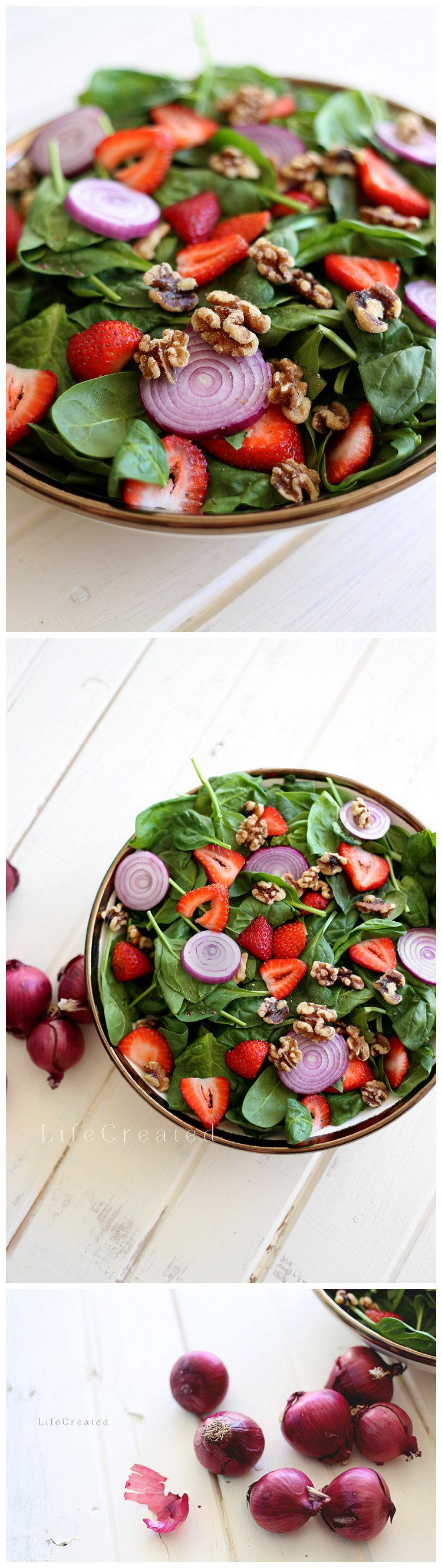 Food Photography; salad