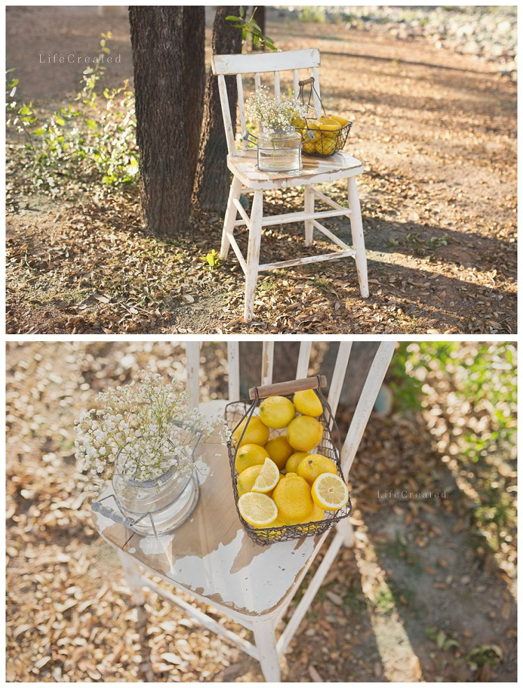styled lemonade engagement