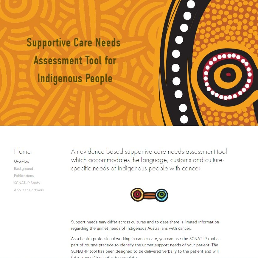Supportive Care Needs Assessment Tool