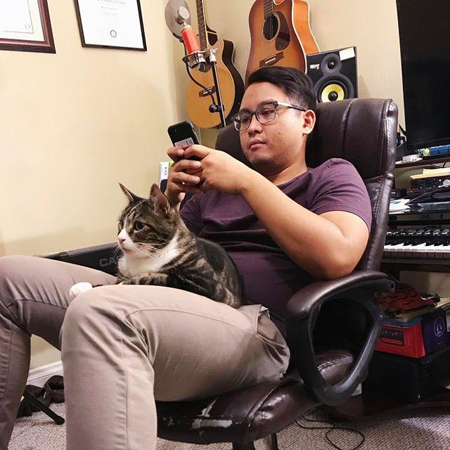 The best partner for those ongoing creative breaks 😺 #kittyerik