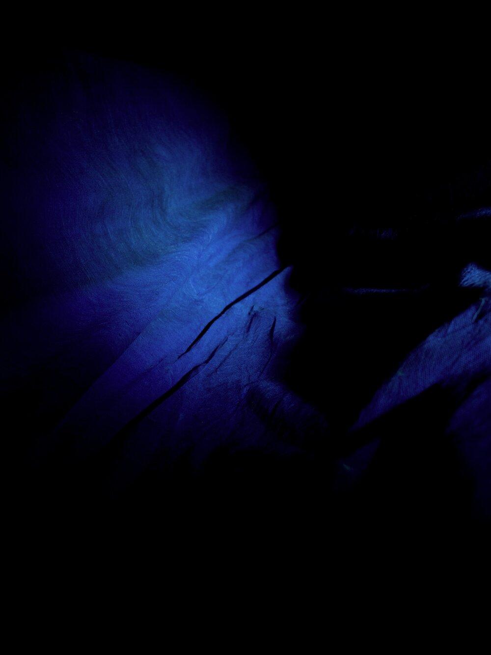 viscera #2