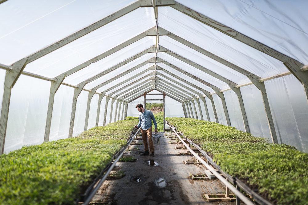 B+L_ambit_farm__7612.jpg