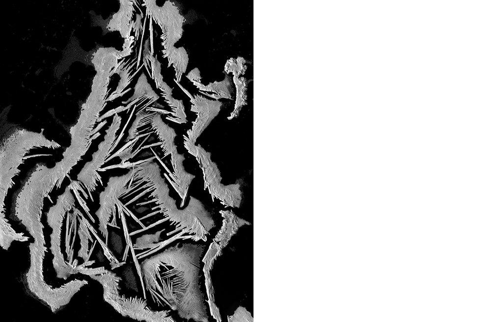 6453-01 Physics - Crystallize  Platinum Palladium Print 13.06 x10.31 inch Image Size 16.88 x 22.13 inch Paper Size 1 BAT / 1 PP /2 AP / 24 EDP