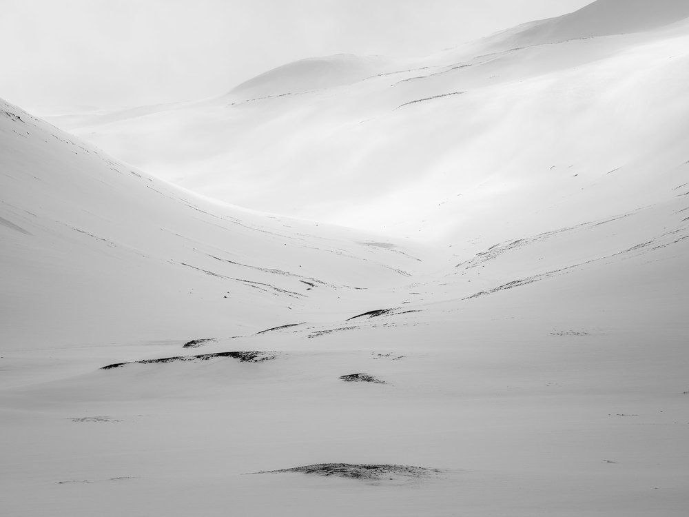 White Space XIV