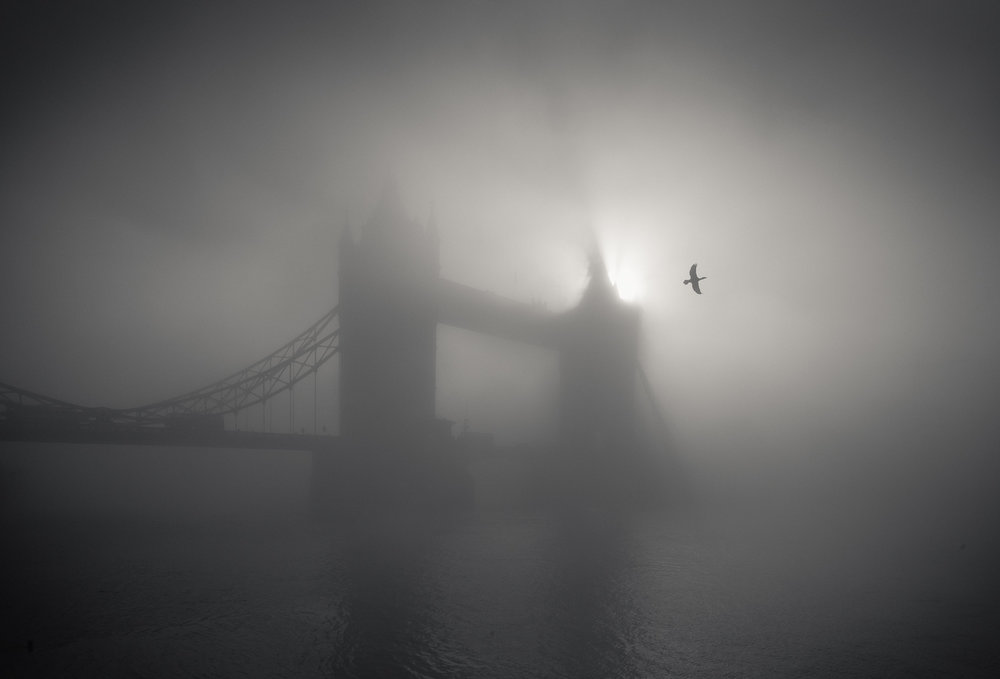 Tower Bridge In Fog