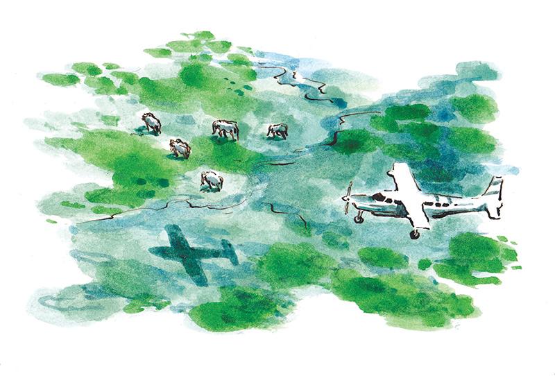 Hemingway's Kenya II