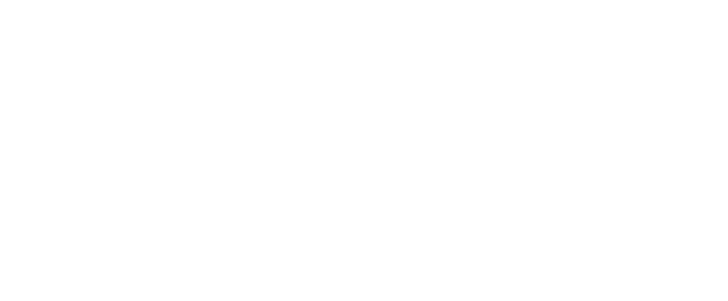THE LAW OFFICE OF PATTI HOLT, PA