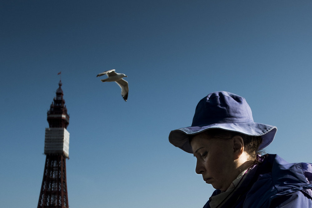 blackpool woman bird tower.jpg