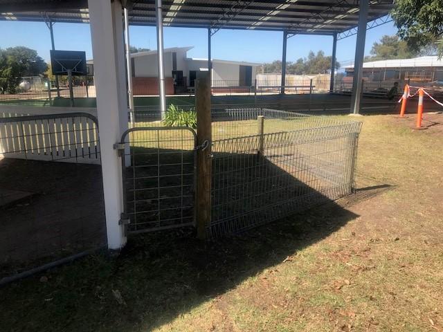 fence 2.jpg