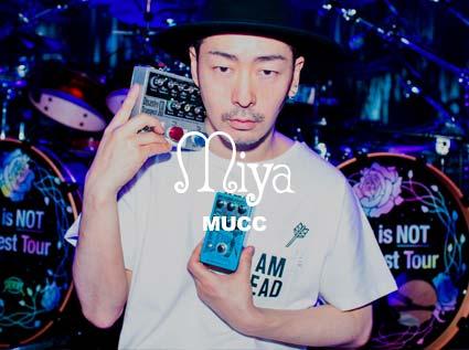 Miya-MUCC.jpg
