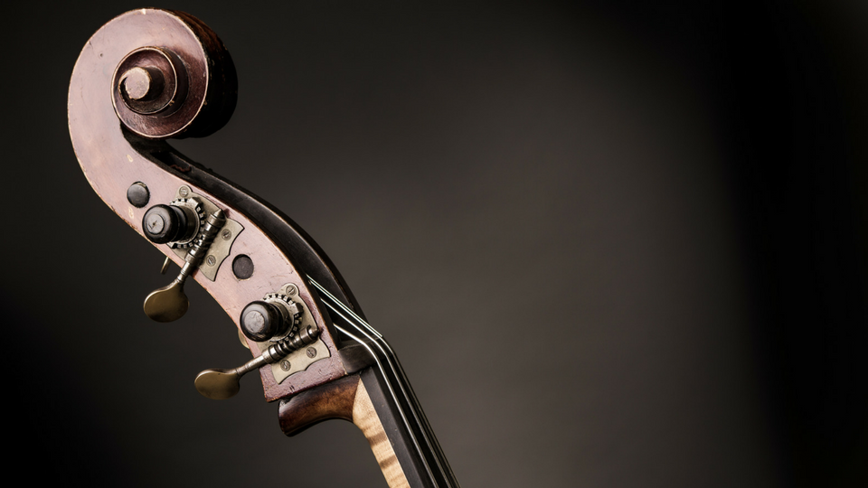 Beginner's Double Bass by Geoff Chalmers