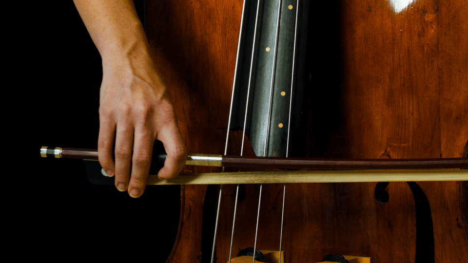 Double Bass Bowing Technique - -A step-by-step video course to master the French bow. 70 lessons, 5+ hrs.