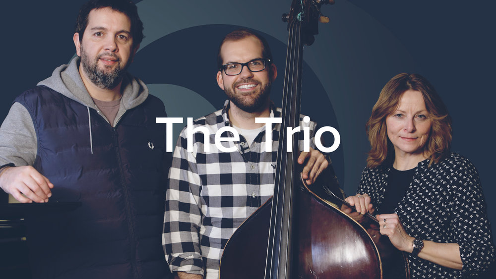 'The Bass Player's Guide to the Trio' by Danny Ziemann. 50 lessons, 3.5hrs.