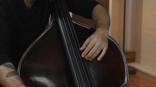 Thumb position technique lessons for double bass.