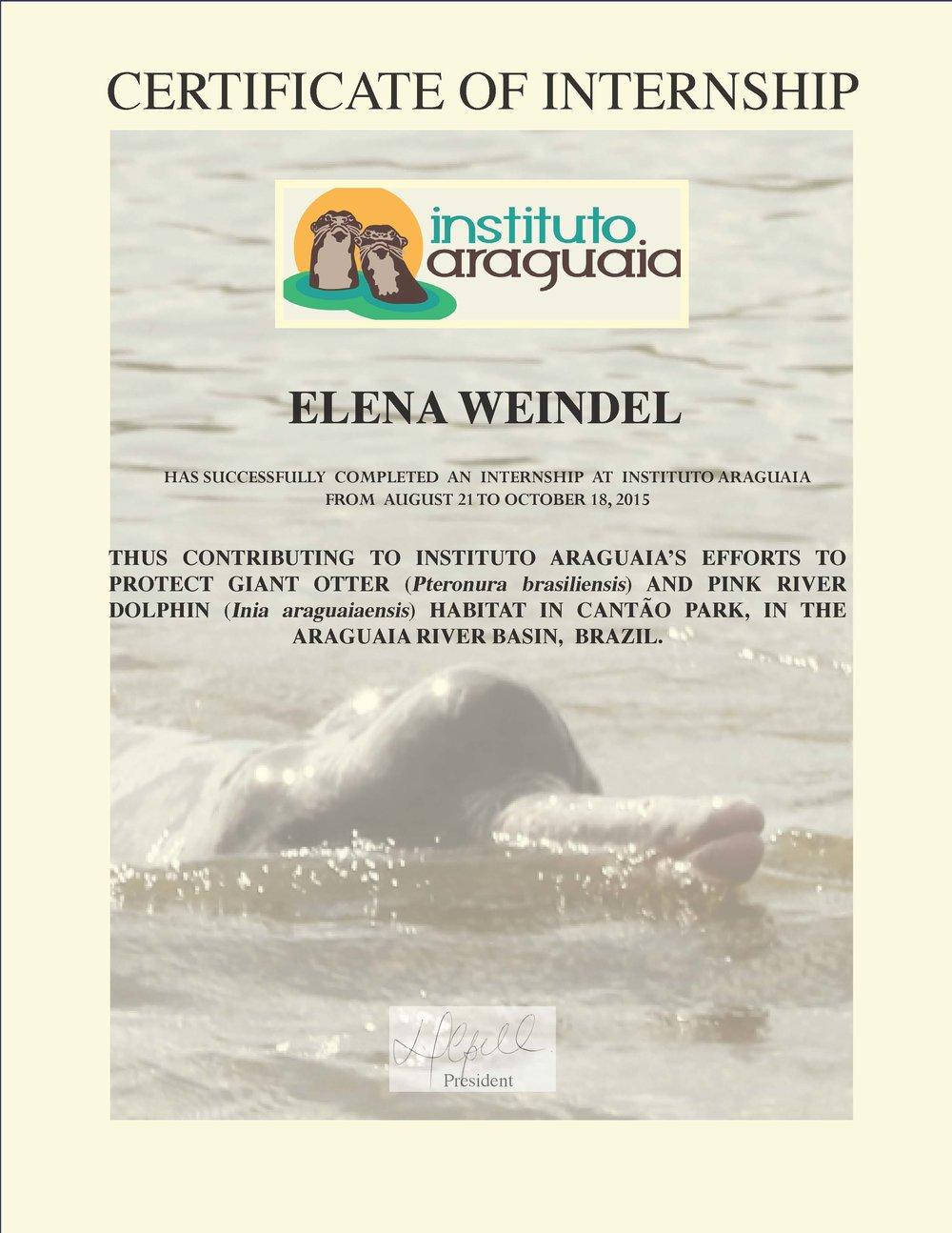 certificado Elena Weindel.jpg