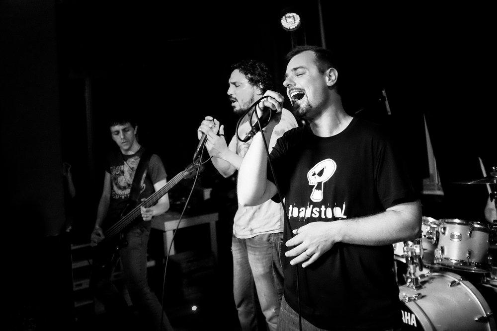 Toadstool-Live-26.jpg