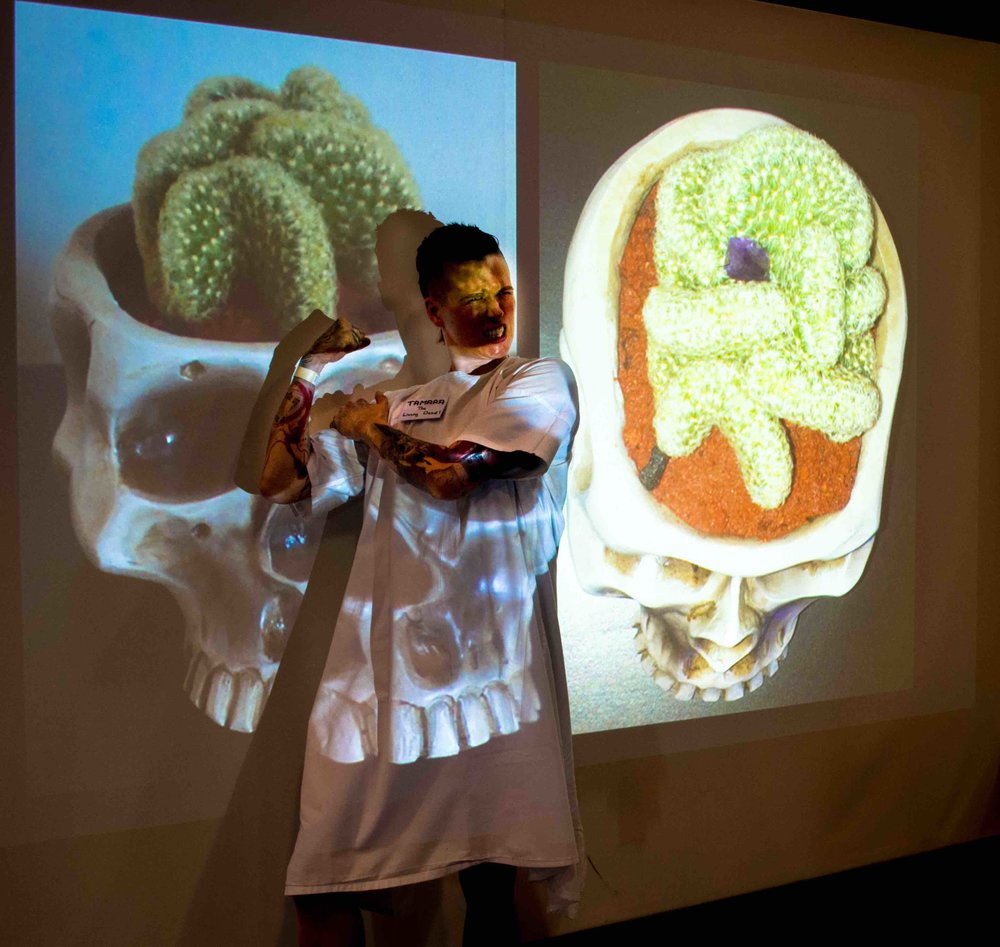 Experiencing Terminal Cancer with Tamara Targo -Sydney Festival of Death and Dying 2017.Photo by Sierra Malevich.