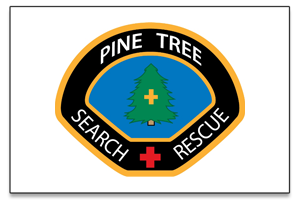 block-pine-tree-search.png
