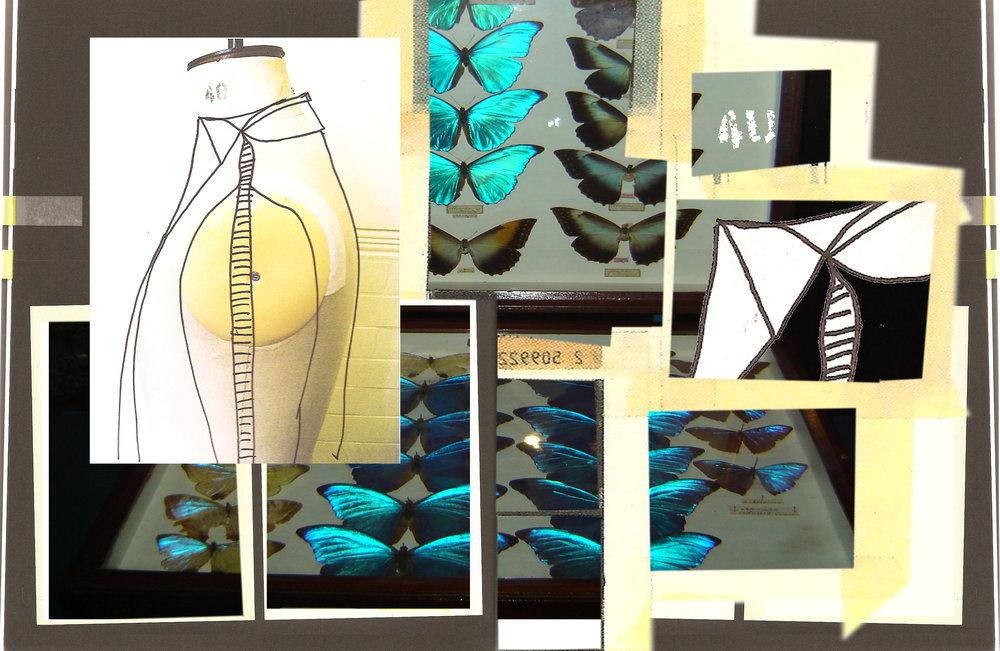 birds&butterflies2.jpg