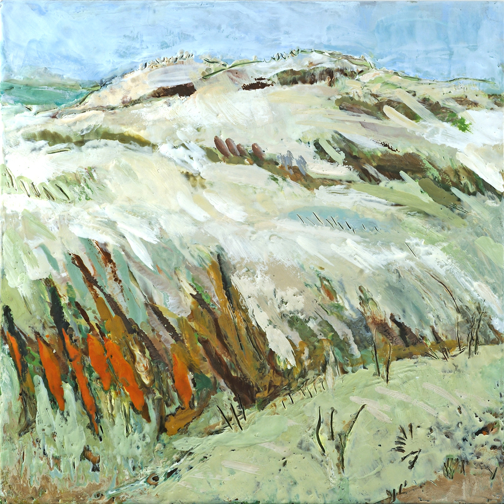 soft dunes.jpg