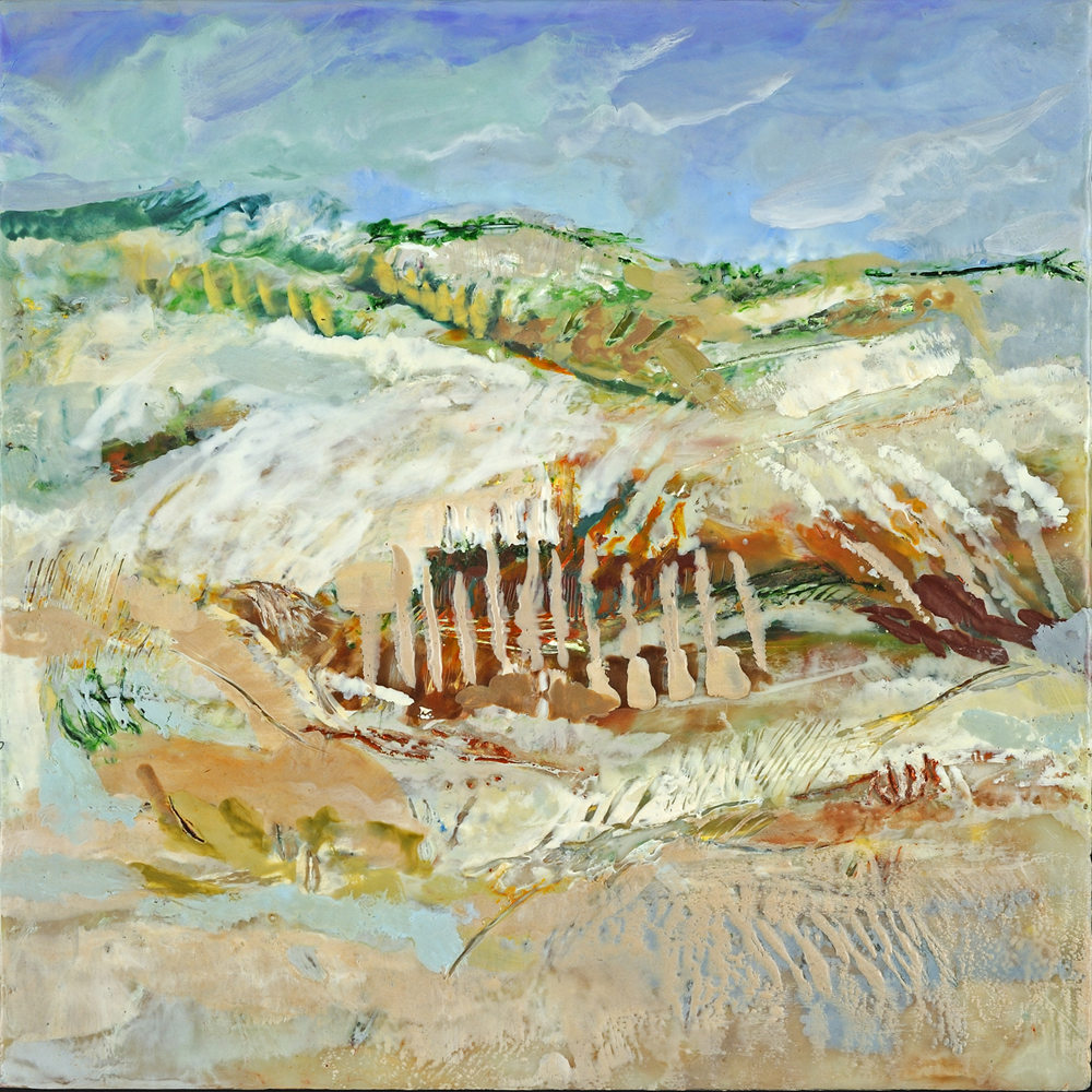 windswept dunes.jpg