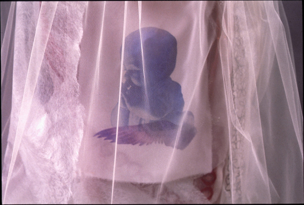 Veiled baby_detail.jpg