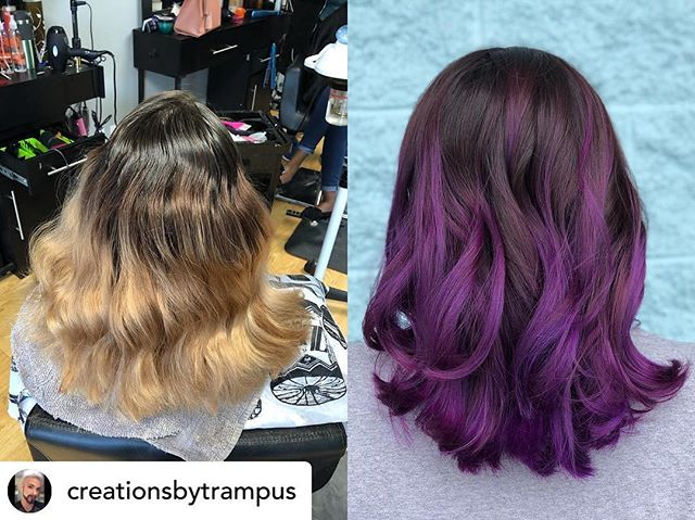 The most gorgeous bright purple!! Posted @withrepost • @creationsbytrampus @malibucpro @wellahair @joicointensity @unite_hair #winstonsalemnorthcarolina#nchairstylists #wsnc #glassdoorsalonandspa #haircut #hairart #colorist #correctivecolor @glassdoorsalon #fashioncolor #hairstylist #wsnc #dtws #dtwsnc