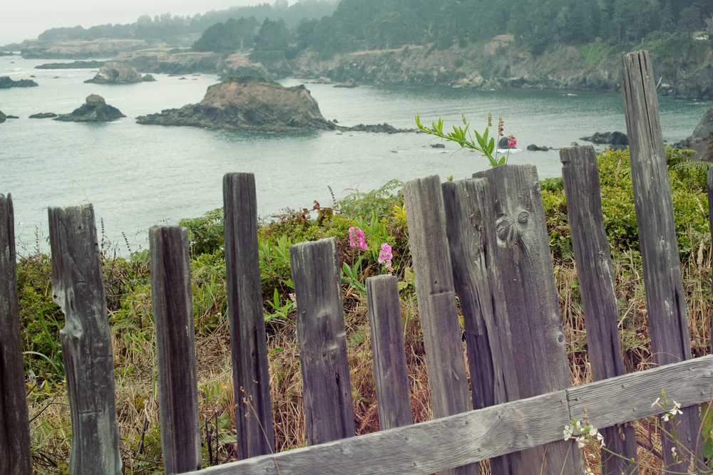 August 1-3, 2019   Mendocino Coast Writers' Conference