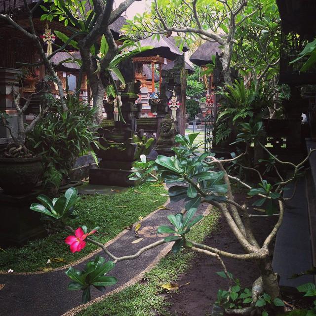 ubud bali airbnb homestay remote work