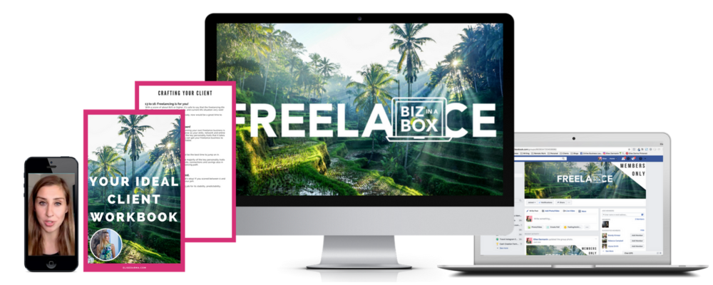 Freelance Biz In A Box - Elise Darma
