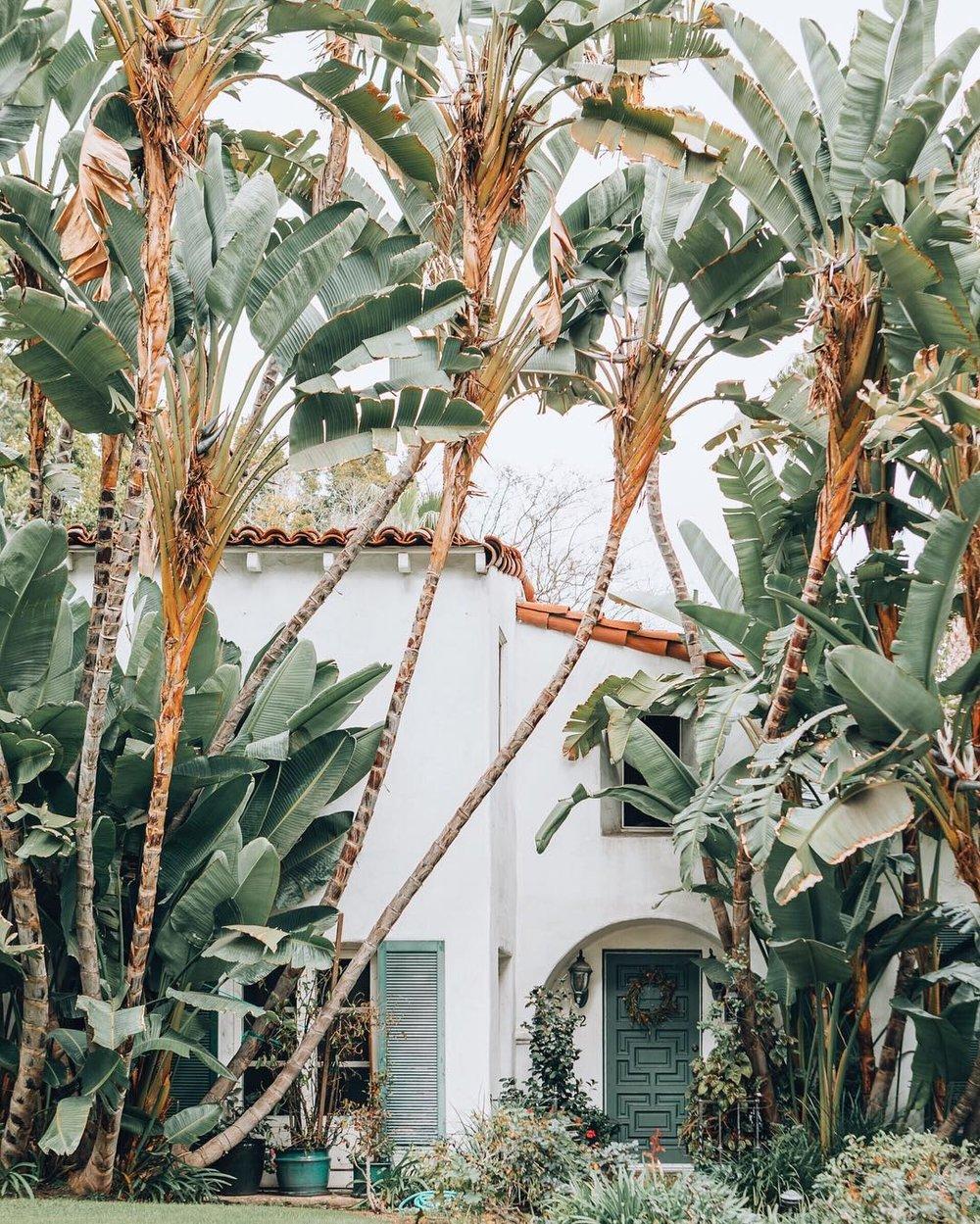 Beverly Hills, California. Shot by Nina  (@tekwani)