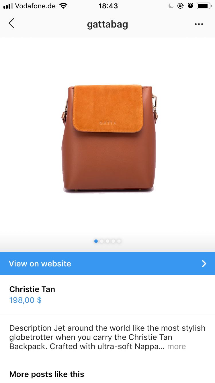 shoppable instagram elise darma gattabag bag.jpeg