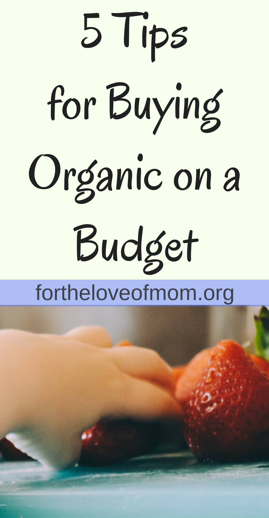 5 Tips for Buying Organic on a Budget (1).png