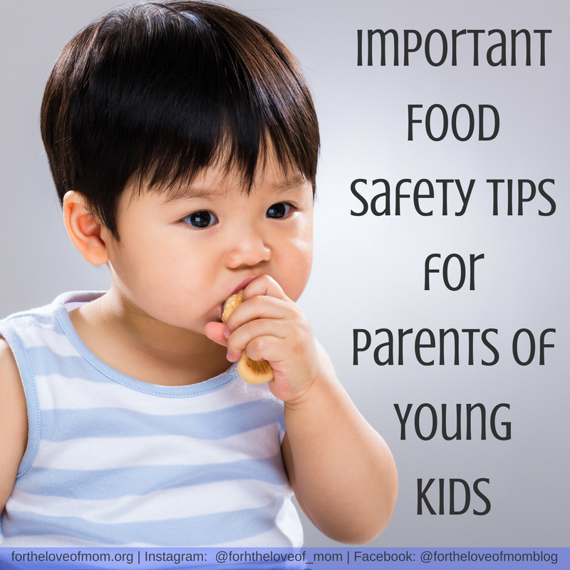 Important Food Safety Tips for Parents of Young Kids | How to Prevent Choking in Toddlers & Preschoolers | Food Safety for Toddlers | #toddlers | #preschoolers | #foodsafety | www.fortheloveofmom.org