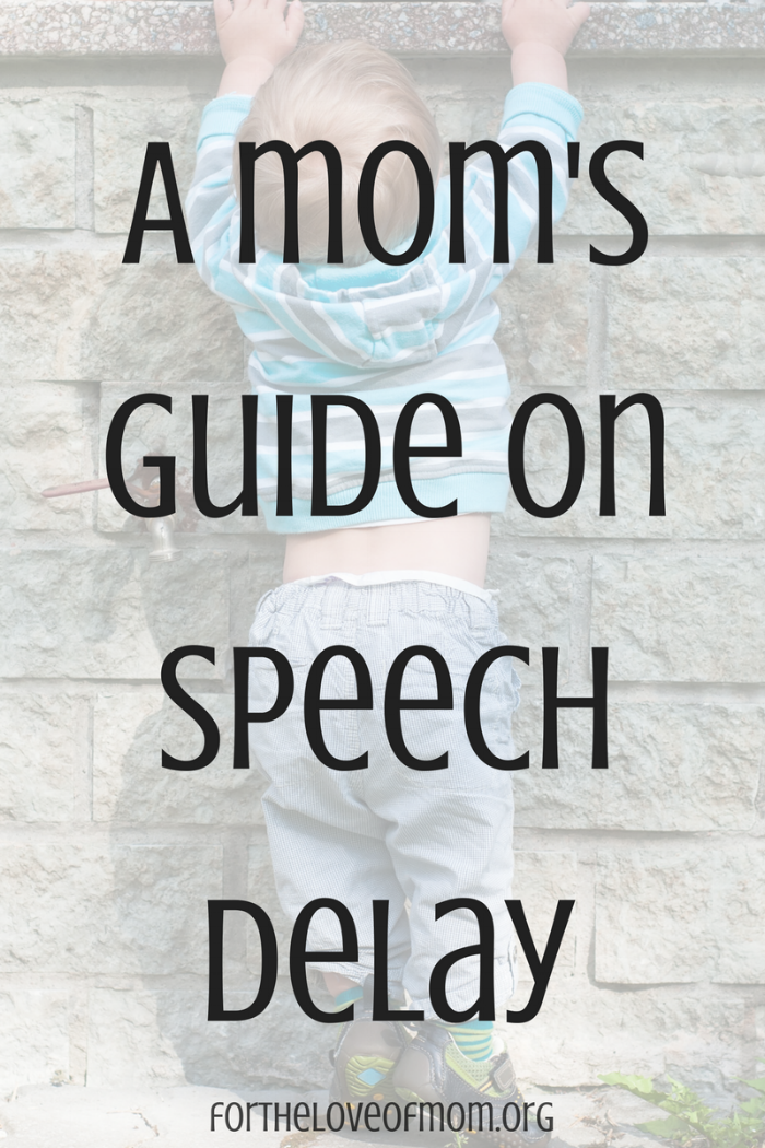 A Mom 's Guide on Speech Delay | How to Recognize Speech Delay | Signs of Speech Delay in Babies & Toddlers | #momlife | #parenting | #babies | #toddlers | www.fortheloveofmom.org
