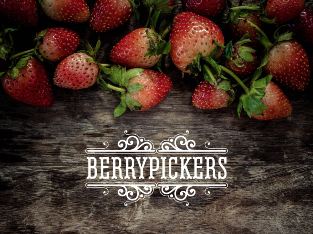 BERRYPICKERS GIN
