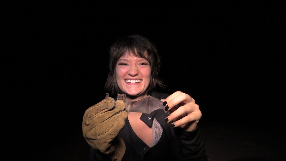 Jessie with Mexican Free-tailed bat