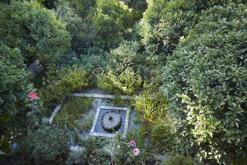Tangier garden